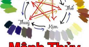 [Giải Đáp] Mệnh Thủy hợp màu gì? Người mệnh Thủy không nên chọn màu gì?