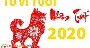 Tử vi tuổi Nhâm Tuất 2020 cho Nam mang và nữ mạng