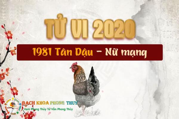 Tử vi nữ mạng tuổi Tân Dậu năm 2020
