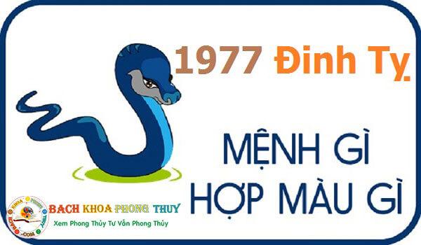 Tuổi Đinh Tỵ sinh năm 1977 hợp với màu gì?