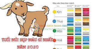 Tuổi Mùi hợp màu gì nhất? màu đem lại TIỀN TẠI VẬN MAY năm 2020