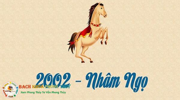 Tuổi Nhâm Ngọ sinh năm 2002 hợp với màu gì?