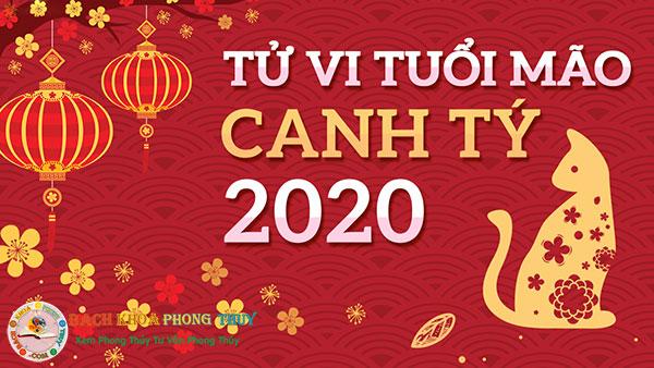 Tử vi tuổi Đinh Mão năm 2020 nam mạng và nữ mạng