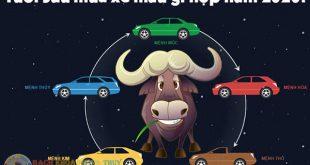 Tuổi Sửu mua xe màu gì hợp, màu gì không hợp năm 2020?