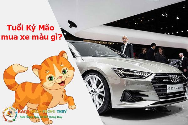 Tuổi Kỷ Mão mua xe màu gì?