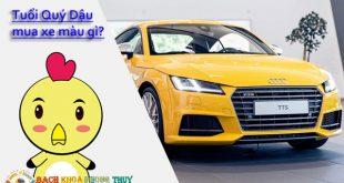 Tuổi Quý Dậu, Tân Dậu, Kỷ Dậu, Đinh Dậu mua xe màu gì hợp nhất 2020