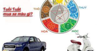 Tuổi tuất mua xe màu gì - Những gợi ý từ chuyên gia