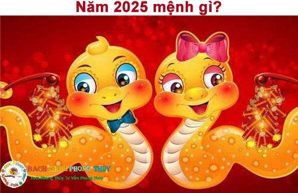 Sinh năm 2025 mệnh gì?