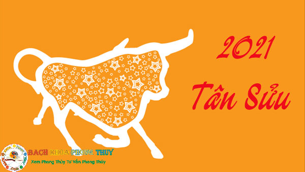 Tết năm 2021 là năm con trâu hay tân sửu
