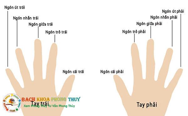 Hé lộ ý nghĩa của việc đeo nhẫn các ngón tay nữ và nam