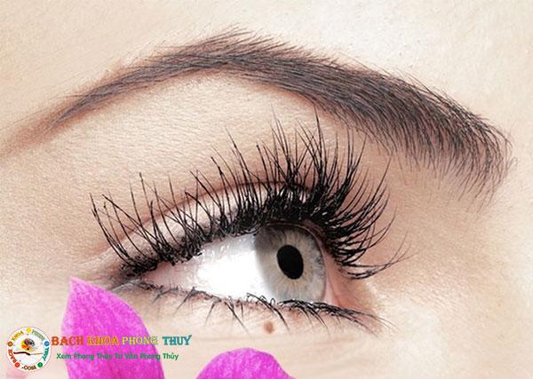 Nốt ruồi ở mí mắt trên, dưới, đuôi mắt, hốc mắt, trái, phải, nam, nữ