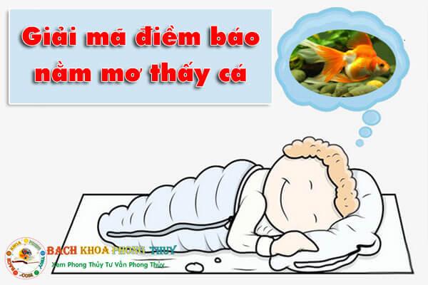 Giải mã điềm báo nằm mơ thấy cá như cá lóc, cá trê, cá rô, cá chép
