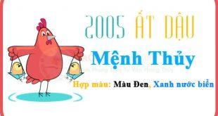 Cách tính sinh năm 2005 mệnh gì, tuổi gì chính xác nhất