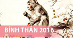 Hướng dẫn tính sinh năm 2016 tuổi gì, mệnh gì, hợp màu gì?